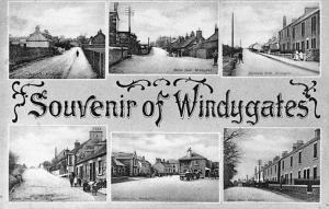 Windygates, Multiview